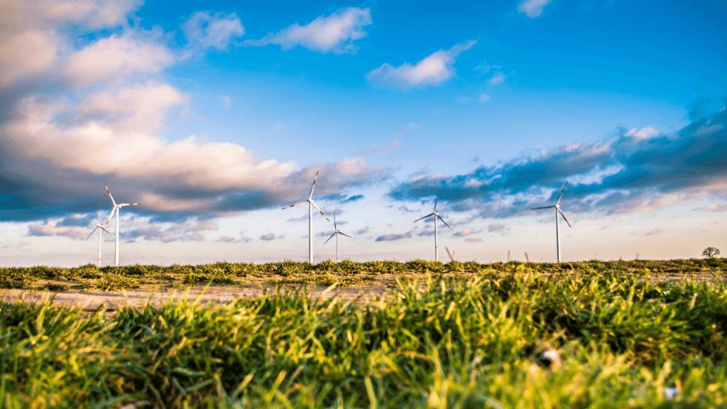 windmolens natuur milieu groene stroom klimaatverandering duurzaamheid